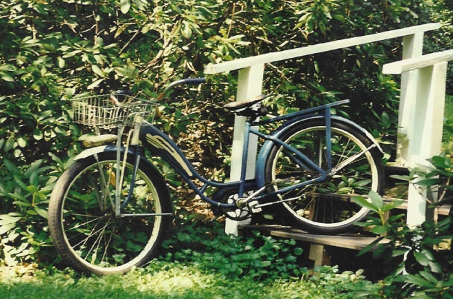 Hidden Sorrow Bicycle.jpg