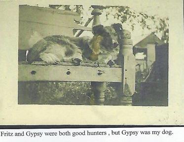 Scan_0029 Gypsy my Father's Dog 2 2 2018.jpg