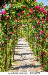 s tock-photo-rose-arch-in-alhambra-palace-castle-granada-spain-646941772 Corridor of Rose Arbors Blog