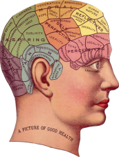 vintage-1418613_640 picture of the human brain for MLB blog 11 2 2018